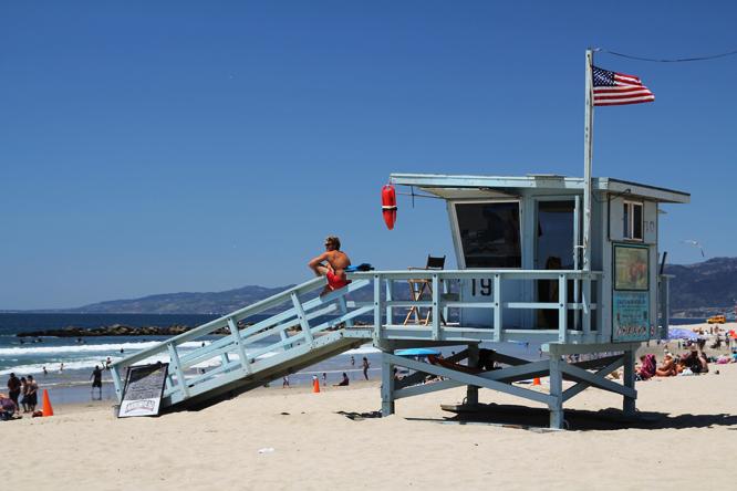 4 V lifeguard