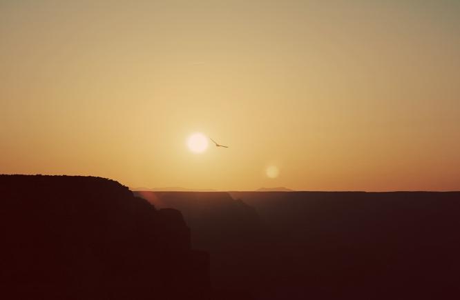 7 solnedg