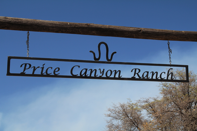 10 3 price canyon