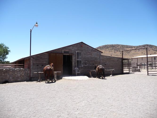 10 3 stallet