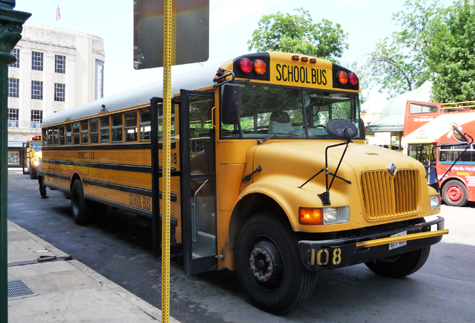 12 bus