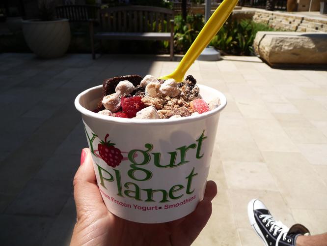 13 frozenyoghurt